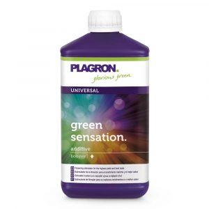 green sensation plagron 1l